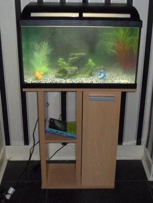 First Tank (1) (Marina 60 Aquarium)