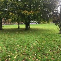 Glasgow Green Scotland Scenery Park 4