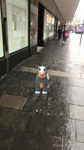 Halloween 2017 Pokémon Go Hunting Houndour Glasgow