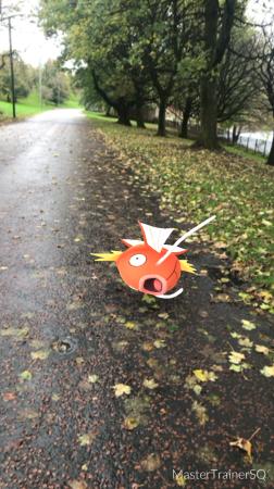 Halloween 2017 Pokémon Go Hunting Magikarp