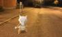 Halloween 2017 Pokémon Go Hunting Marowak Glasgow Green Football Pitches