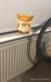 Halloween 2017 Pokémon Go Hunting Raticate