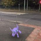 Halloween 2017 Pokémon Go Hunting Sableye