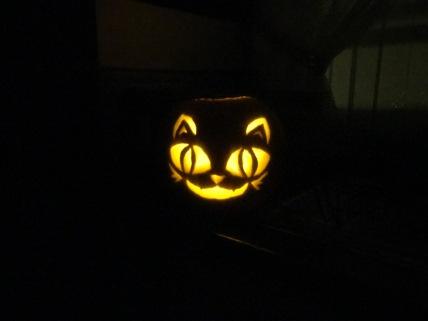 My Halloween Pumpkin Designs Cat Dark