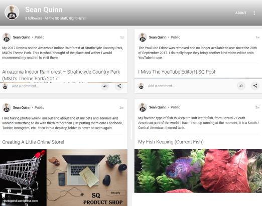 Sean Quinn Google+ (1)