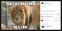 Gotta' Laugh (Facebook Page) 1