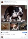 Gotta' Laugh (Facebook Page) 2