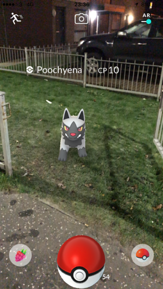Caught Some New Gen 3 Pokémon Capturing Poochyena 3