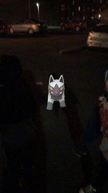 Caught Some New Gen 3 Pokémon Poochyena 3