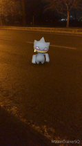 Pokémon Go Hunting At Night Banette Caugh