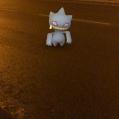 Pokémon Go Hunting At Night Banette Caugh