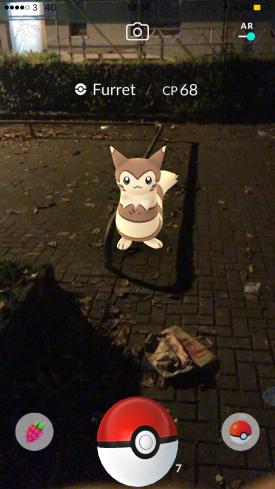 Pokémon Go Hunting At Night Capturing Furret