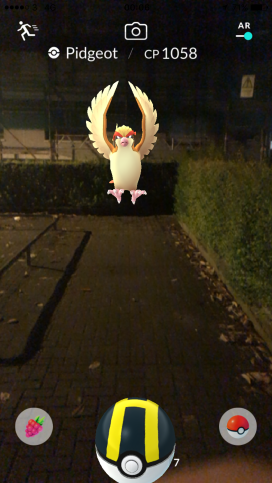 Pokémon Go Hunting At Night Capturing Pidgeot