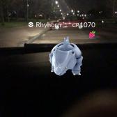 Pokémon Go Hunting At Night Capturing Ryhorn