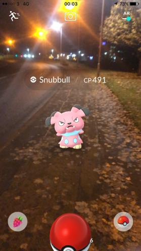 Pokémon Go Hunting At Night Capturing Snubbull