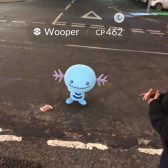 Pokémon Go Hunting At Night Capturing Wooper 2