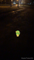 Pokémon Go Hunting At Night Caterpie 1