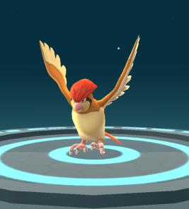 Pokémon Go Hunting At Night Evolved Pidgeotto