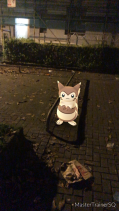 Pokémon Go Hunting At Night Furret