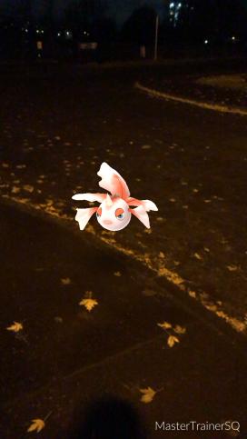 Pokémon Go Hunting At Night Goldeen
