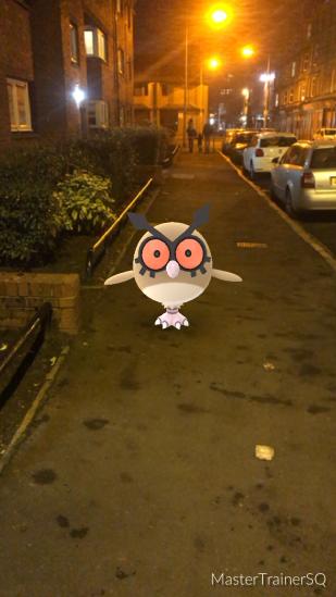 Pokémon Go Hunting At Night HootHoot 1