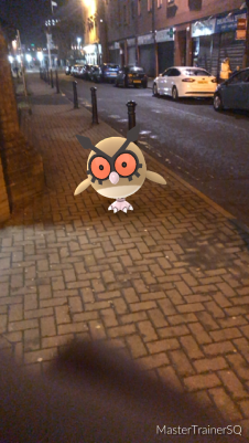 Pokémon Go Hunting At Night HootHoot 2