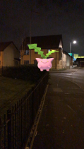Pokémon Go Hunting At Night Hoppit