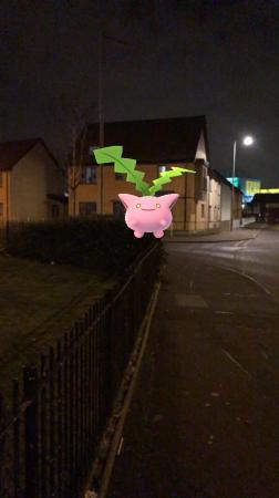 Pokémon Go Hunting At Night Hoppit