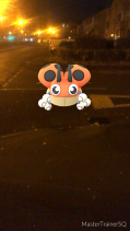 Pokémon Go Hunting At Night Ledyba
