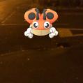 Pokémon Go Hunting At Night Ledyba