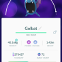 Pokémon Go Hunting At Night Listing Golbat