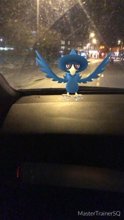 Pokémon Go Hunting At Night Murkrow 2
