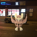 Pokémon Go Hunting At Night Noctowl