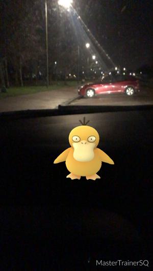 Pokémon Go Hunting At Night Psyduck Caught 1