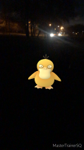 Pokémon Go Hunting At Night Psyduck Caught 2