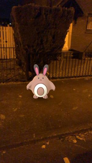 Pokémon Go Hunting At Night Sentret