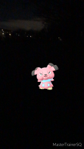Pokémon Go Hunting At Night Snubbull Caught 1
