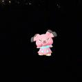 Pokémon Go Hunting At Night Snubbull Caught 1