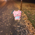 Pokémon Go Hunting At Night Snubbull Caught 2
