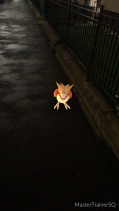 Pokémon Go Hunting At Night Spearow 2