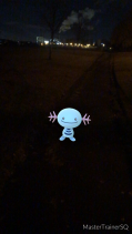 Pokémon Go Hunting At Night Wooper