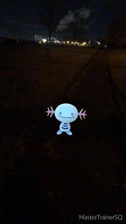 Pokémon Go Hunting At Night Wooper