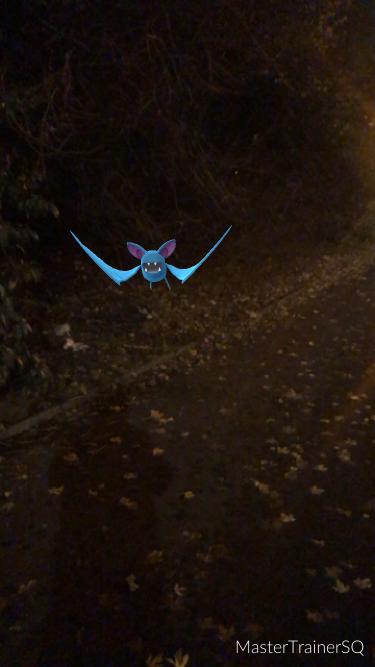 Pokémon Go Hunting At Night Zubat