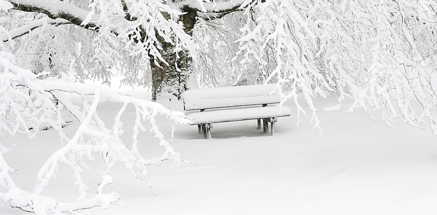 Snow Bench Scene
