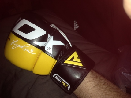 RDX MMA Kit Glove Top